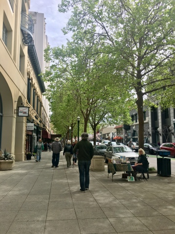 Tree lined streets of Santa Cruz